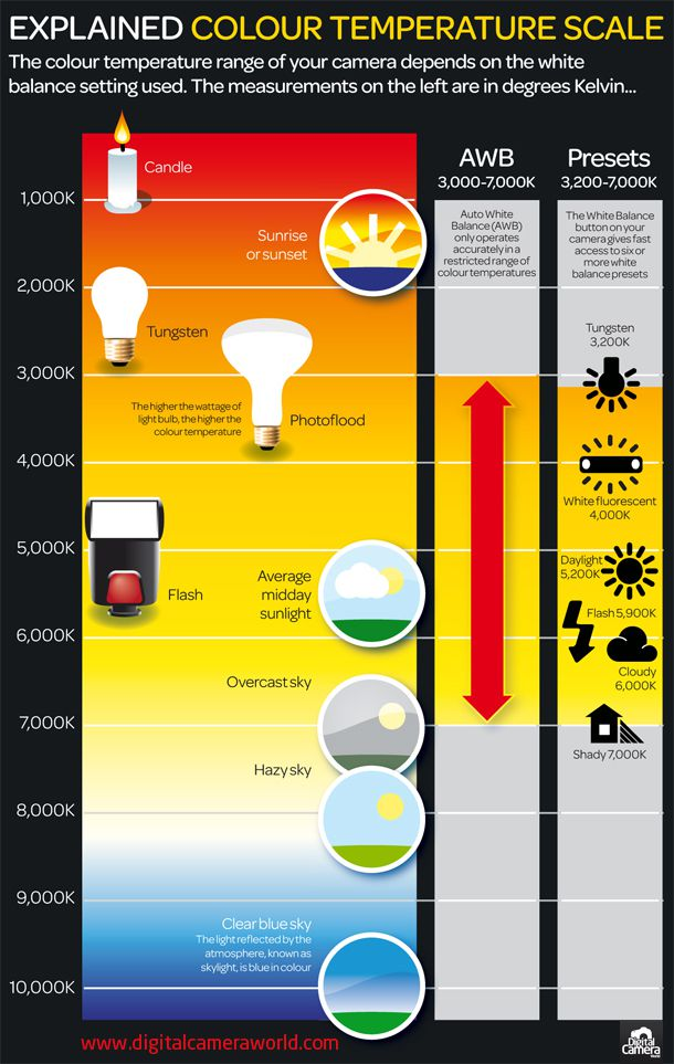degrees of kelvin white balance infographic