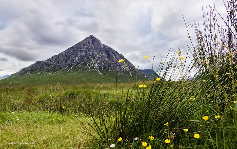 Stob Dearg Buachaille Etive Mòr - Scotland's most photographed mountain