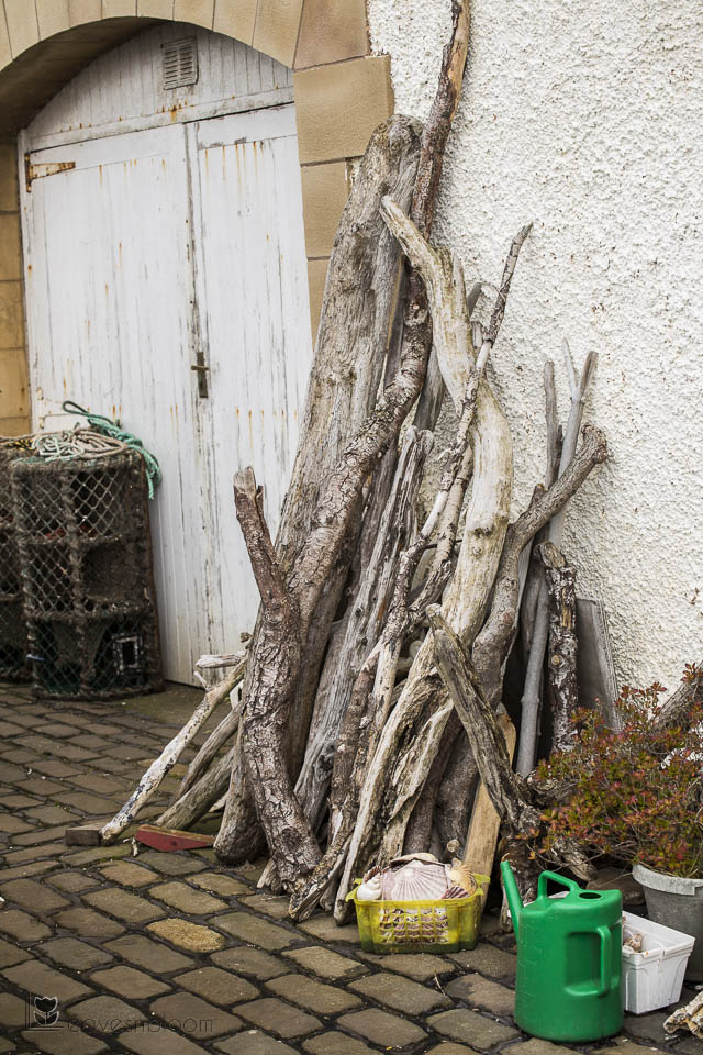drift wood outside house east neuk