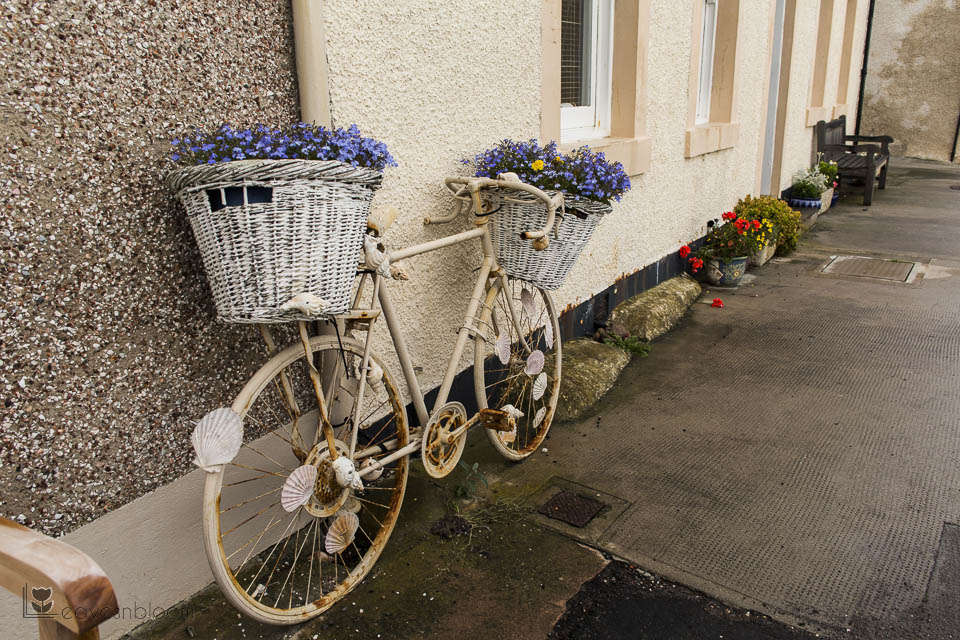 curb appeal bicycle with flowers