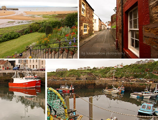 this is a collage of scenes from East Neuk photography,  Fife, Scotland