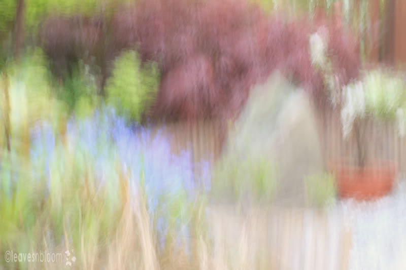 Impressionist painterly photographs - Japanese garden | Paint with light