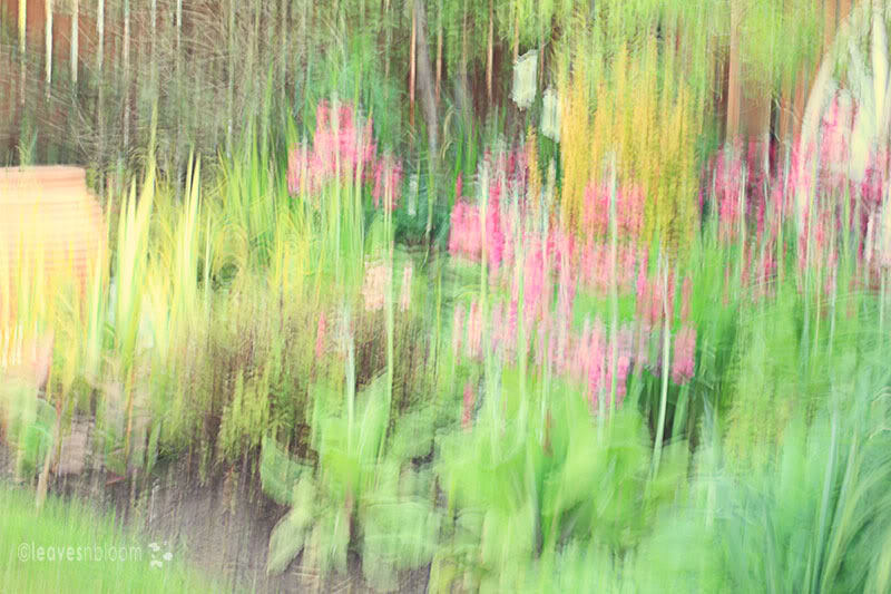Creating impressionist painterly photographs in camera