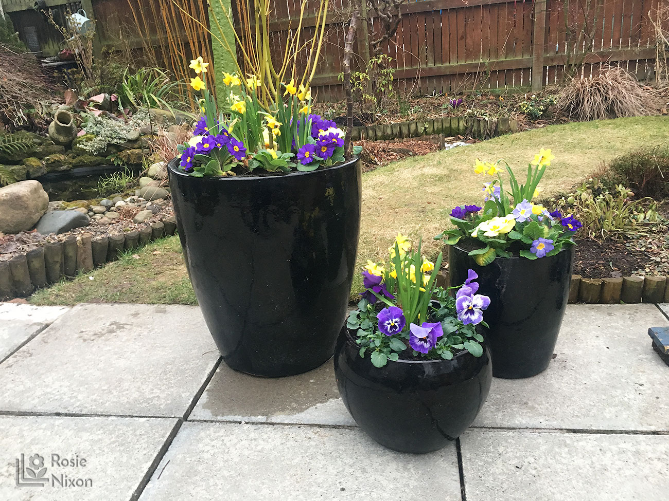 more planted containers full of spring bedding